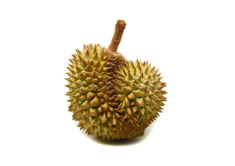 Durian sur le blanc photographie stock libre de droits