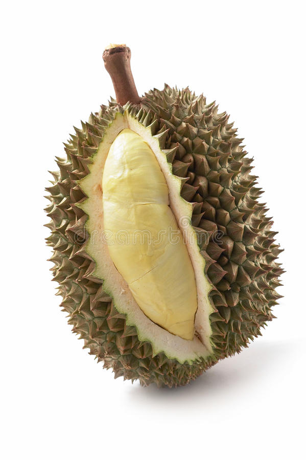 Durian sur le fond blanc image stock
