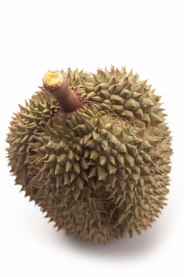 Durian sur le fond blanc photographie stock