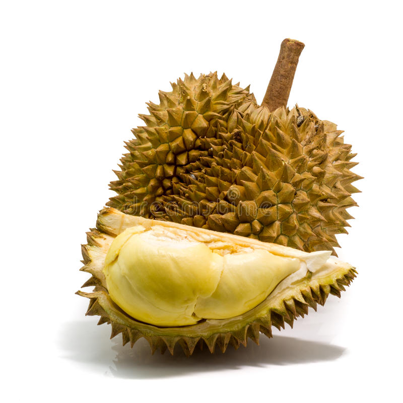 Download Durian Thaïlandais, Fruit Tropical Photo stock - Image du blanc, fond: 56489382