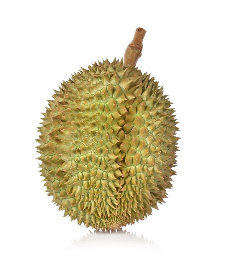 Durian tropikalna owoc na bia?ym tle obraz stock
