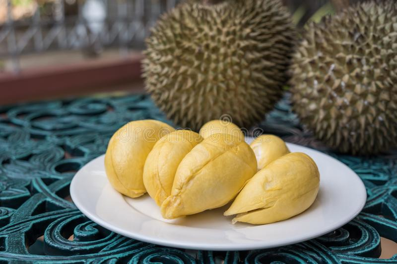 Durian on white plate in background. Long stem or `Kan yao` durian. royalty free stock photography