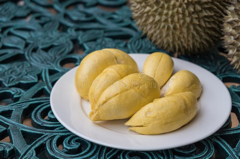 Durian on white plate in background. Long stem or `Kan yao` durian. royalty free stock image