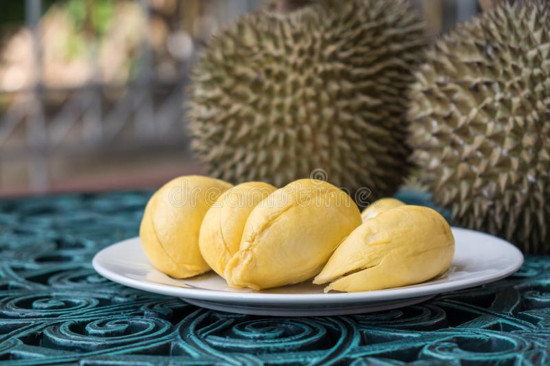 Durian on white plate in background. Long stem or `Kan yao` durian. stock image