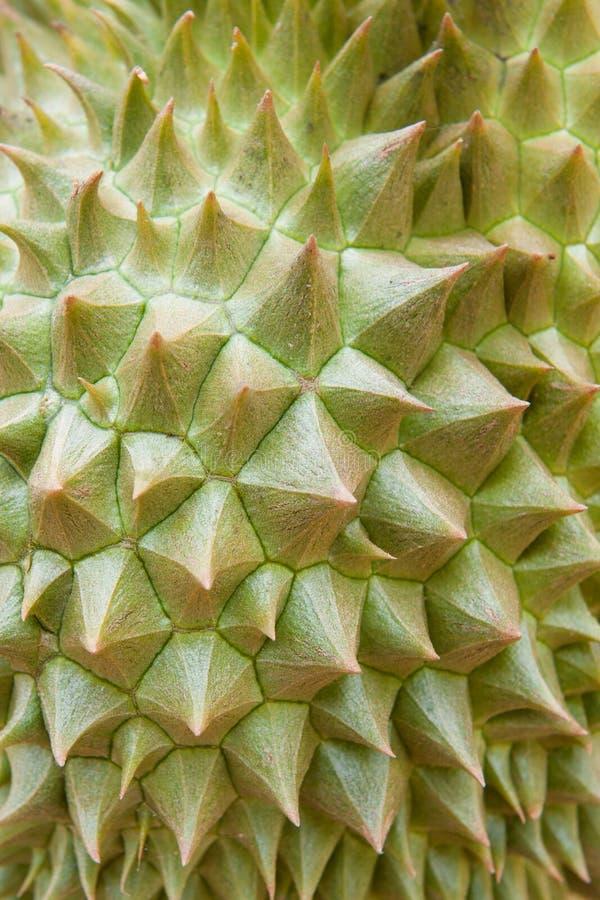 Durianbeschaffenheit stockbild