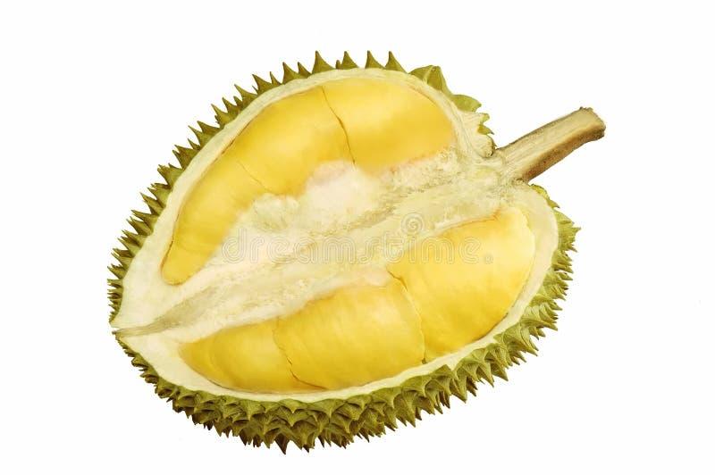 durianfrukt arkivbilder