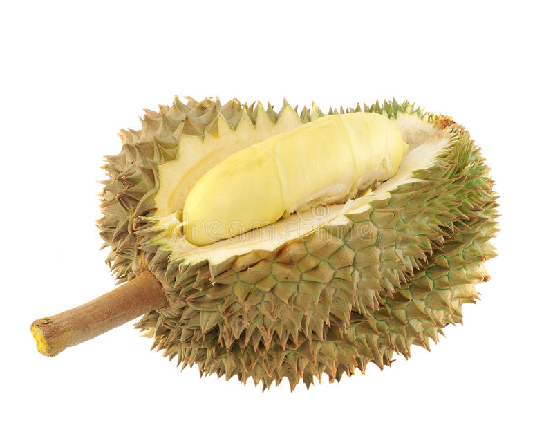 durianfruktkonung arkivfoto