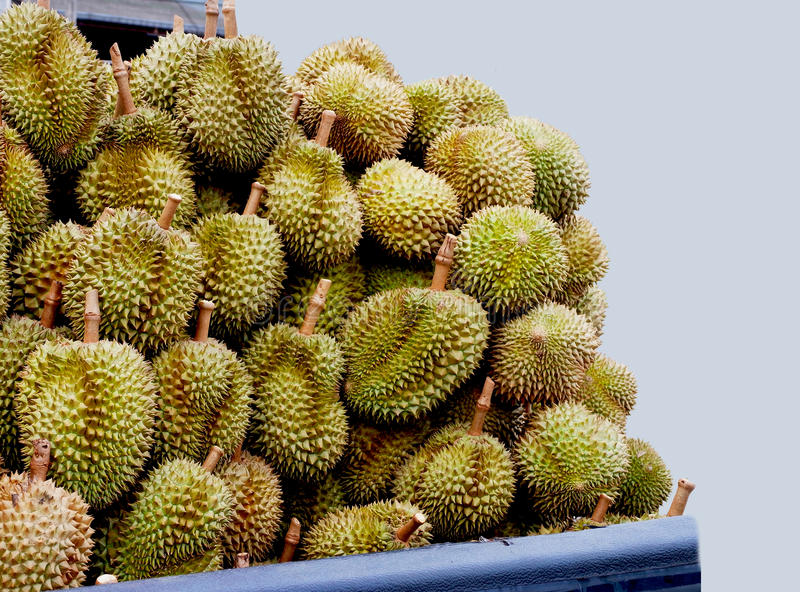 Durians image stock