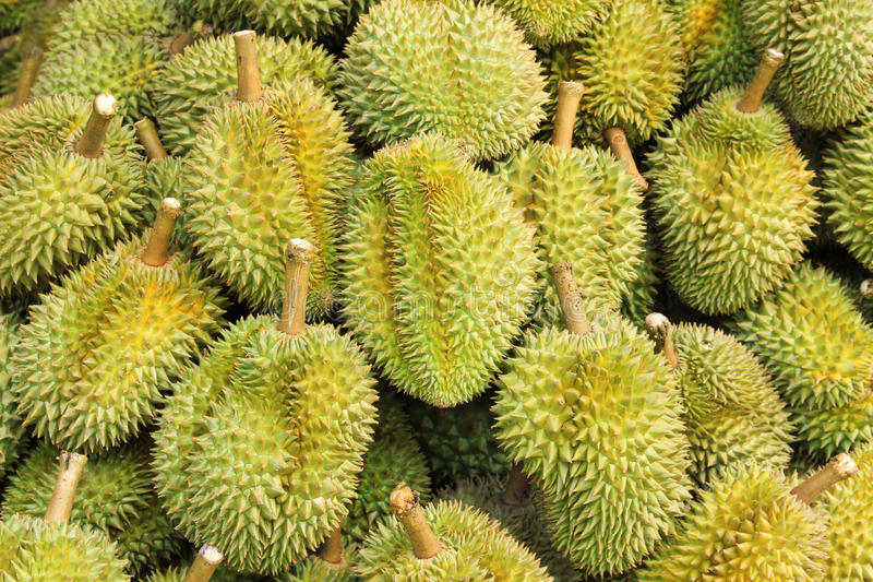 Durians fotografia de stock royalty free