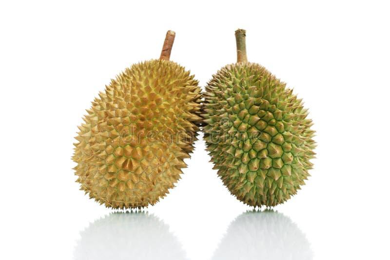Durians lizenzfreie stockbilder