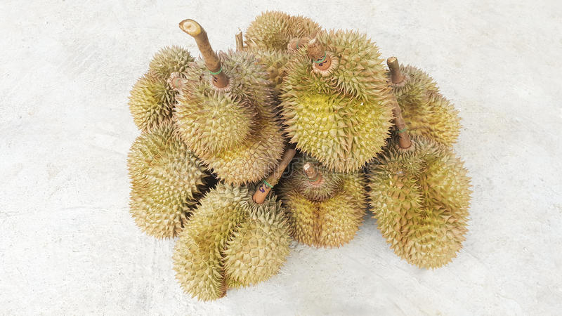 Durians delicious fruits in thailand. This is durians delicious fruits in thailand royalty free stock photo