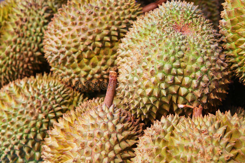 Durians at market. Durians at the Phuket market, Thailand royalty free stock images