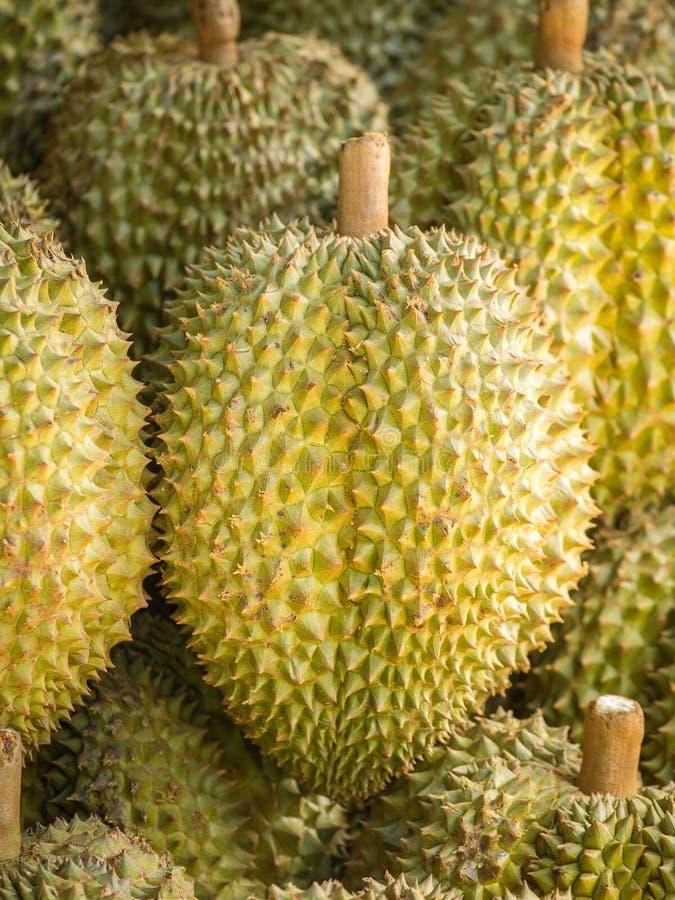 Durianvruchten stock afbeeldingen