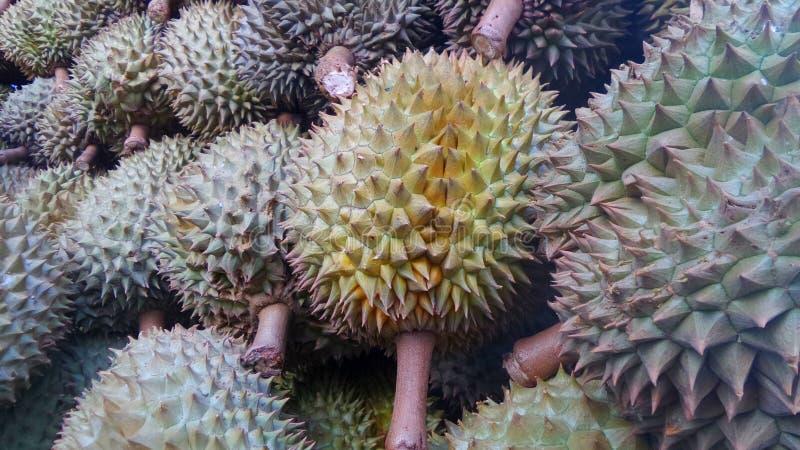 Durianvruchten stock foto's