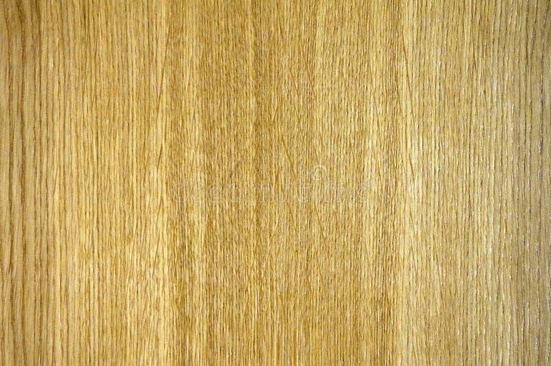 Durmast wood texture stock photos
