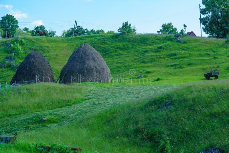 durmitor的村庄 库存照片