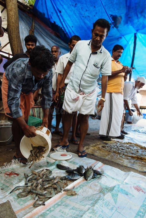 Duro lavoro alla fabbrica della spezia nel Kochi, India fotografie stock libere da diritti