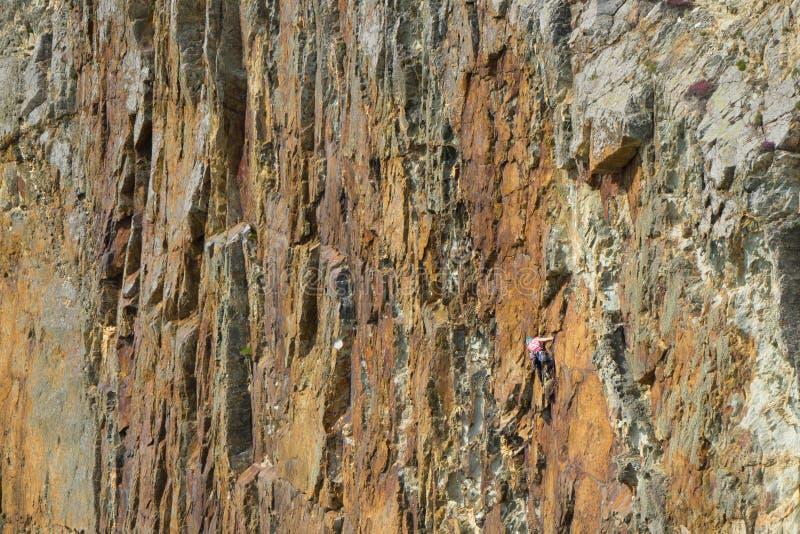 Durvende rotsklimmer op klippengezicht royalty-vrije stock afbeelding