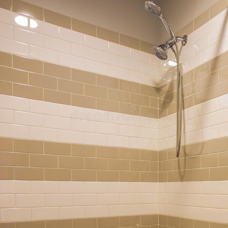 Dusch med handduschen inom ett badrum royaltyfri bild
