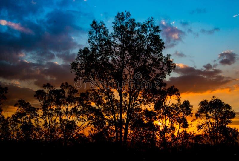 Dusk Clouds Sunset stock image