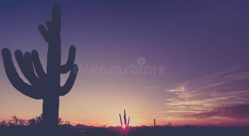 Sunset over Phoenix desert landscape royalty free stock photography