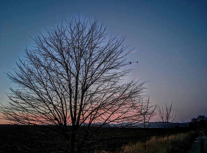 Dusk in a village royalty free stock images