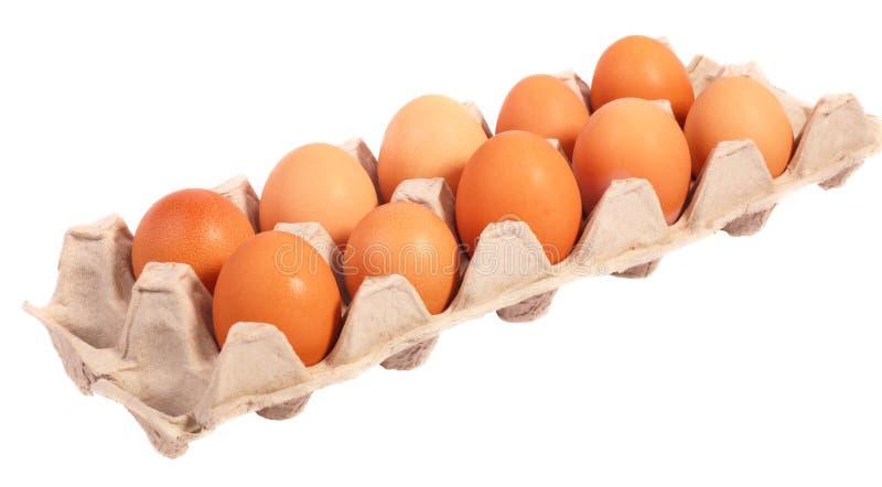 dussina ägg arkivfoto