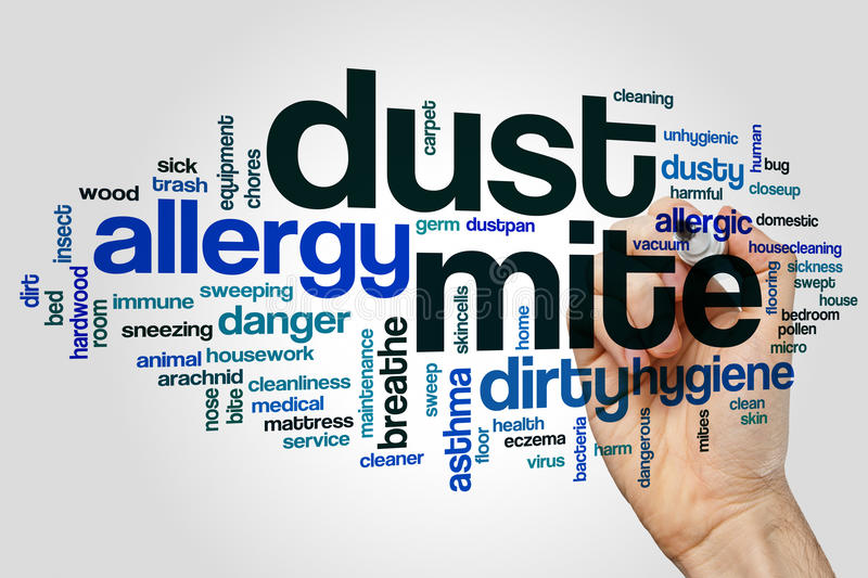 Dust mite word cloud concept on grey background.  stock photography