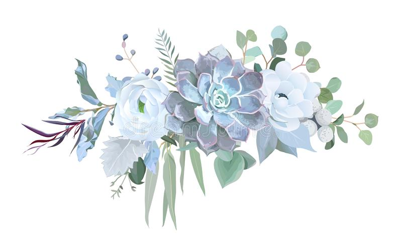 Dusty blue echeveria succulent, white ranunculus, anemone, eucalyptus. Silver greenery vector design bouquet. Wedding seasonal flowers.Floral border vector illustration