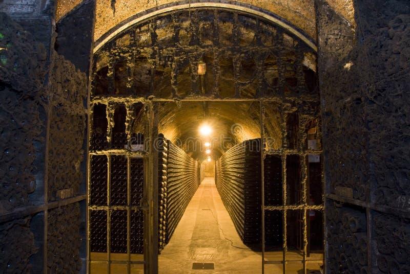 Download Dusty door stock photo. Image of cellar, bottle, humidity - 15566412