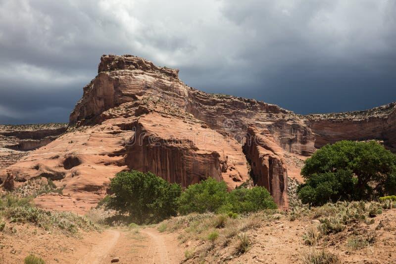 Dusty Navajo Road photo stock