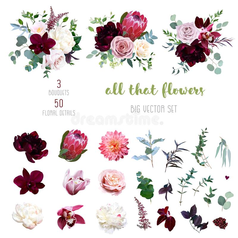 Free Dusty Pink And Creamy Rose, Coral Dahlia, Burgundy And White Peony Flowers Stock Photo - 164880380