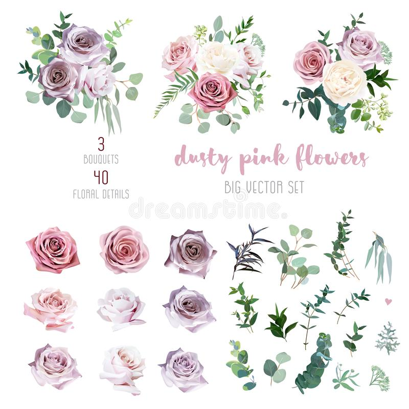 Dusty pink and mauve antique rose, lavender and pale flowers, eucalyptus stock illustration