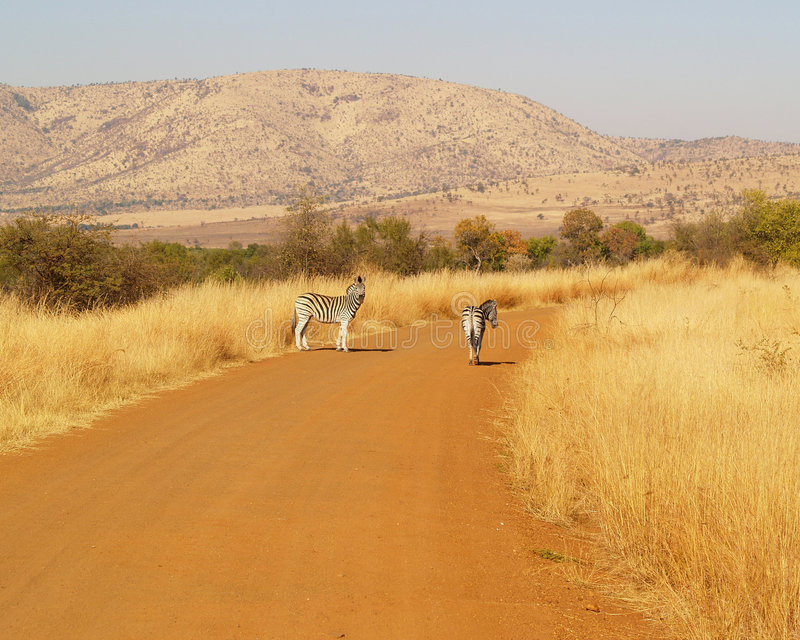 Download Dusty Road Stock Photos - Image: 8062183