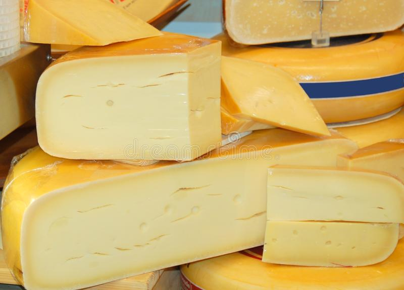 Download Dutch cheese stock photo. Image of mouse, wheel, gourmet - 11885310