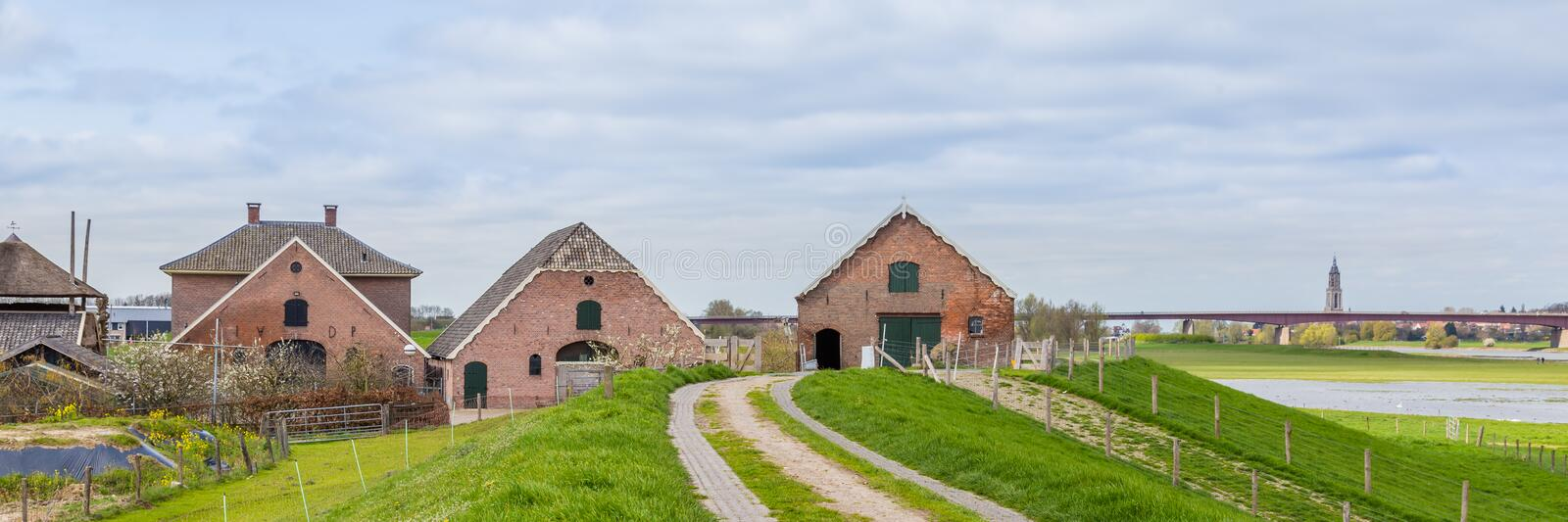 Modern open cowstabe and old farm. Dutch farm with an open modern cow stable along the dikes of the river Rhine with a view on Rhenen in the Netherlands royalty free stock photos