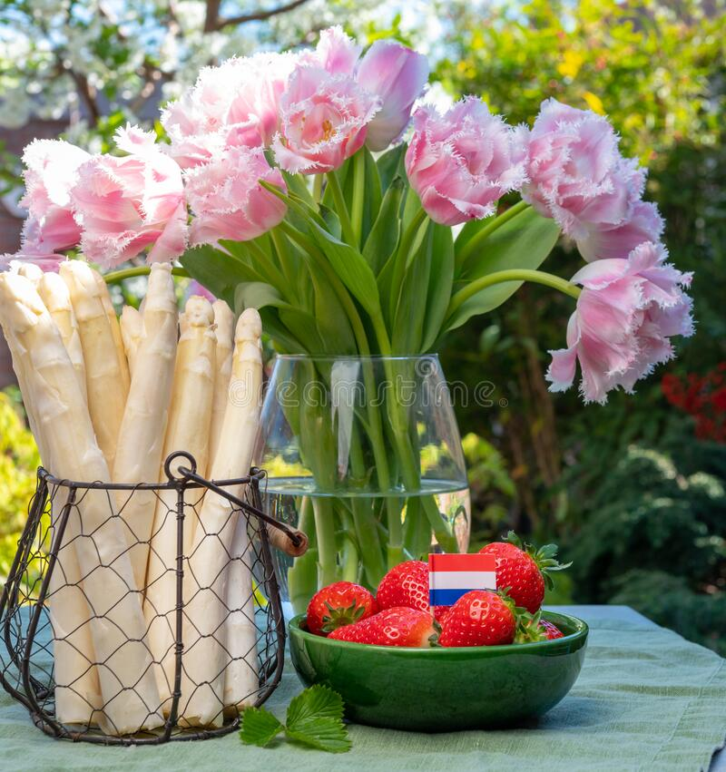 Dutch farmers products, fresh white asparagus, red ripe strawberry and pink tulips flowers in spring sunny garden. Dutch farmers high quality products, fresh royalty free stock images