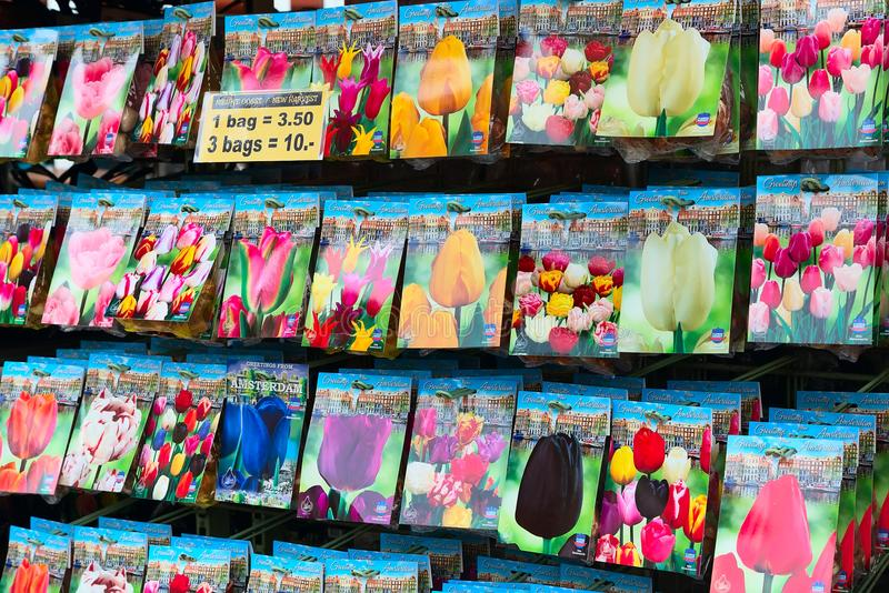 Dutch flower market, people in Amsterdam, Holland royalty free stock images
