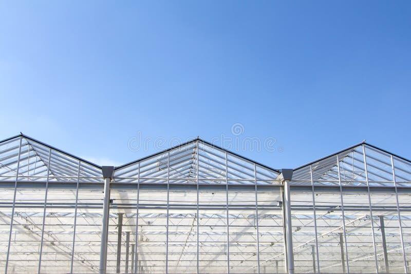 Dutch Green house