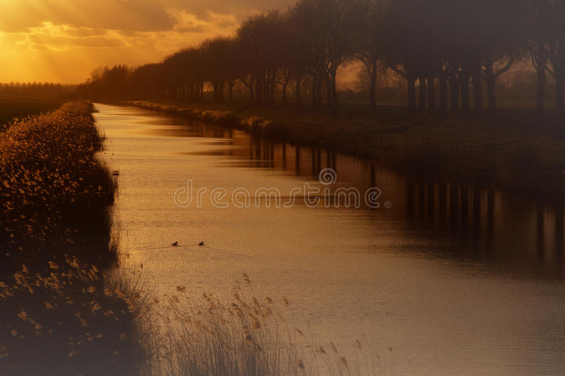 Download Dutch landscape stock photo. Image of canal, mist, landscape - 24297952