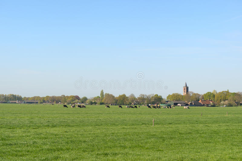 Dutch landscape with small village royalty free stock photo