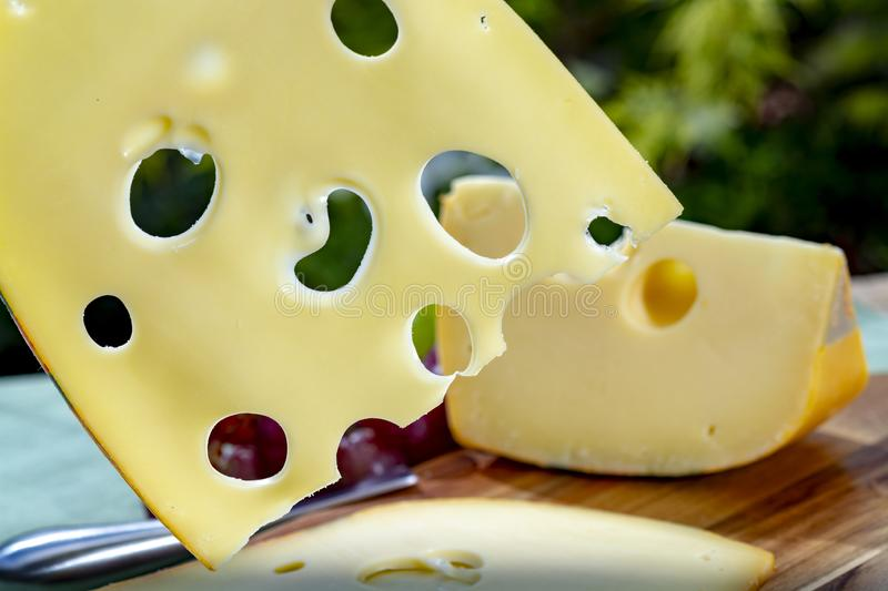 Dutch Maasdam hard cheese with holes, piece and sliced, served outdoor in green garden. Dutch Maasdam hard cheese with holes, piece and sliced, served with stock image