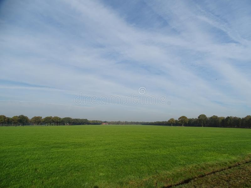 Dutch meadow under blue sky with some high clouds royalty free stock image