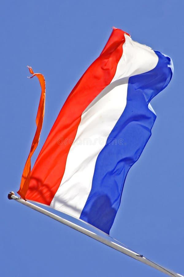 Download Dutch national flag stock image. Image of netherlands - 2353837