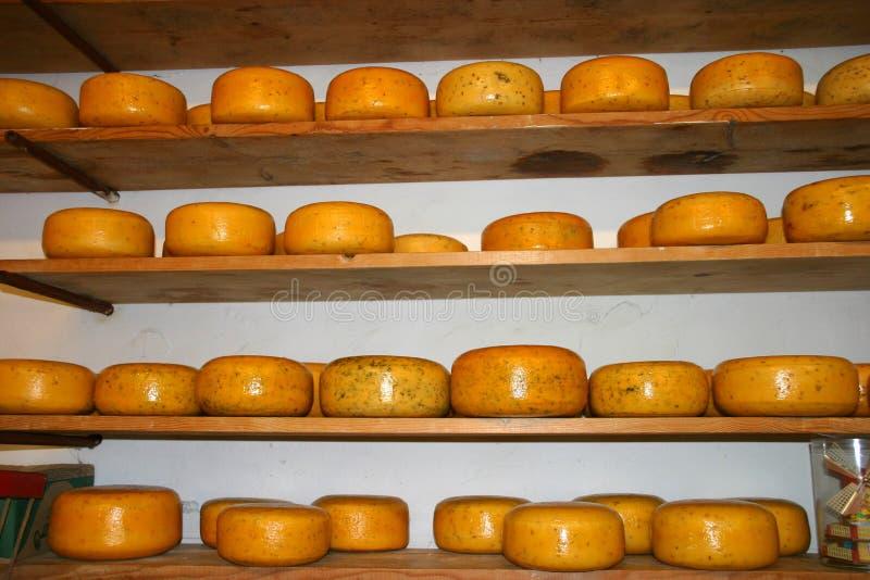dutch serowy stack obraz stock