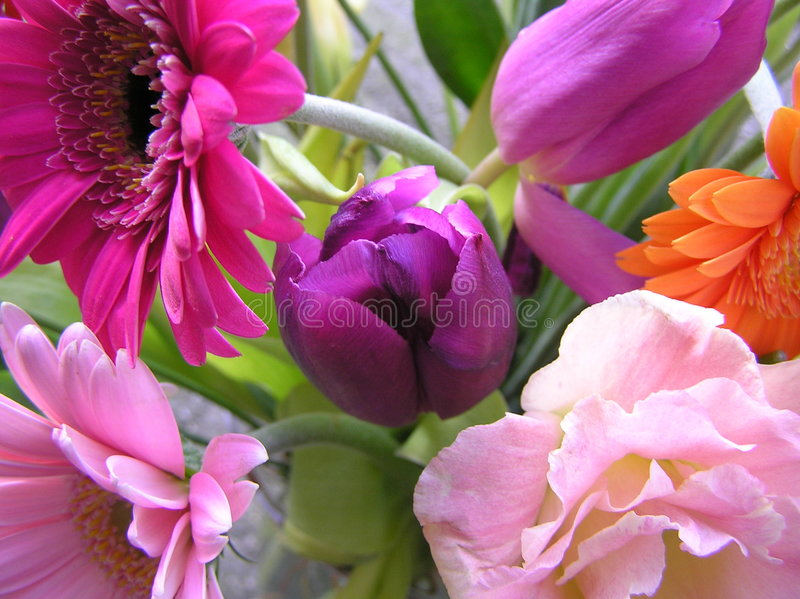 Dutch spring bouquet stock image