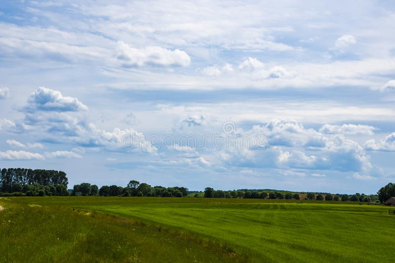 Dutch Summer landscape with green grass and cloudy blue sky stock images