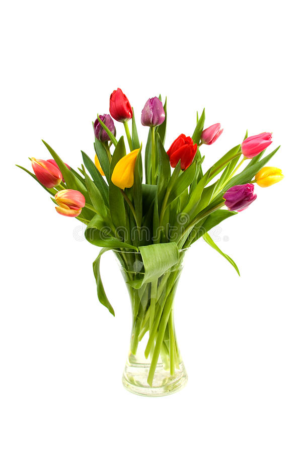 Free Dutch Tulips In Glass Vase Stock Photography - 12692482