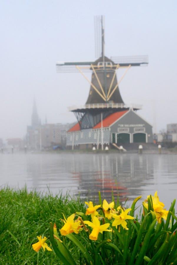 Free Dutch Windmill Stock Photo - 13810040