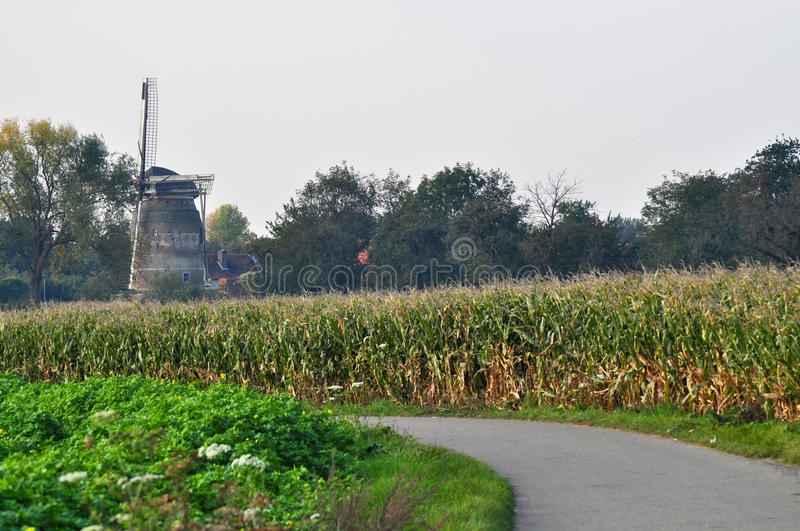 Dutch Windmill in Autumn Colors royalty free stock photography